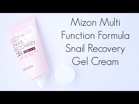 Fail or Holy Grail Review: Mizon Multi Function Formula Snail Recovery Gel Cream