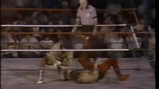 Rick Martel vs The Spoiler