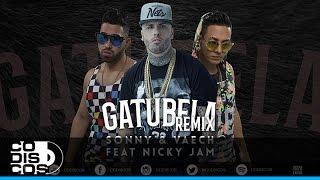 Sonny & Vaech Feat Nicky Jam - Gatubela (Remix) | Audio