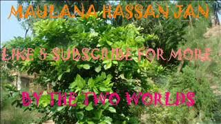 Maulana Hassan Jan Pashto Bayan 410-Imam Ahmad Ibn Hambal Khyber Pukhtun Khawa KPK
