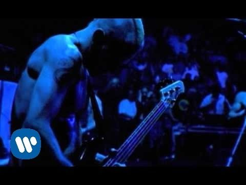 Xxx Mp4 Red Hot Chili Peppers Coffee Shop Official Music Video 3gp Sex