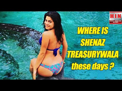 Xxx Mp4 Where Is Shenaz Treasurywala The Hot Actress Of Delhi Belly 3gp Sex