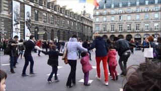 Café des Roumains Paris solidaire avec Rosia Montana