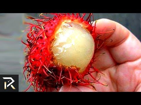 Exotic Foods You Must NEVER Consume Brutal Foods