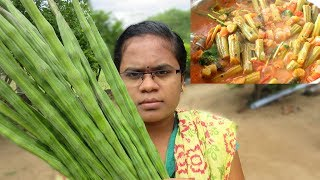 Cooking Drumstick Recipe in My Village | Tasty Drumstick Curry | VILLAGE FOOD