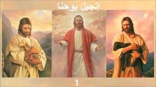 ✥ 4. إنجيل يوحنا (الكتاب المقدس الصوت باللغة العربية) ✥