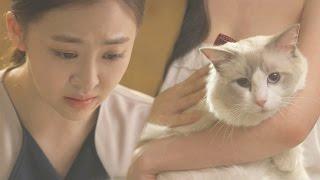 다솜, 고양이에 무릎 꿇으며 '굴욕적인 사과' @언니는 살아있다 1회 20170415
