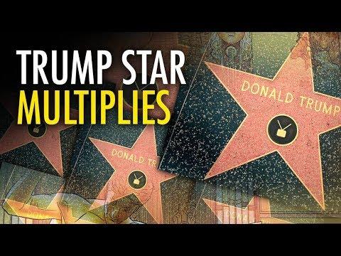 Xxx Mp4 Martina Markota Activists Lay New Trump Hollywood Stars 3gp Sex