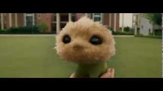 CJ7[2008].mp4 akkum..akkum...