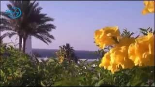 جولة في جزيرة تيران السعودية  #