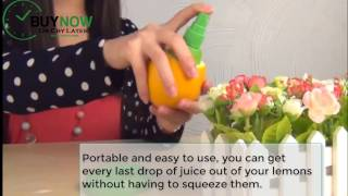 Lemon Sprayer - the best Lime Juice Extractor