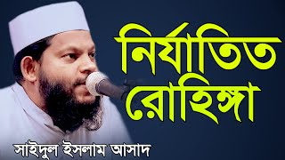 Stop killing Rohinga Muslim By Saidul Islam Asad নির্যাতিত রোহিঙ্গা