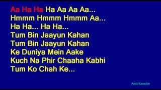 Tum Bin Jaayun Kaha - Kishore Kumar Hindi Full Karaoke with Lyrics