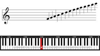 Belajar Not Balok - 2 Kunci G dan F Posisi di tuts piano