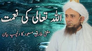 Allah Tala Ki Nimatein Best Bayan Ever Mufi Tariq Masood | Islam Candle