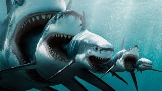 New Movies 2017 Movie Trailer - Jaws The Beginning (This is why he Kills you)
