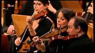 Bach Matthäus-Passion BWV 244 52 61 Aria Können Tränen meiner Wangen nichts erlangen - Robin Blaze