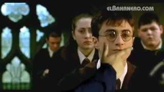 Harry El Sucio Potter - El Bananero [ENG Subt] (Harry Dirty Potter)