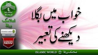 Khwabon Ki Tabeer In Urdu - Khwab Mein Bagla Dekhna - Khwab Mein Bagla Dekhnay Ki Tabeer