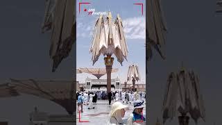 أثناء فتح مظلة المسجد النبوي الشريف