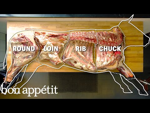 How To Butcher An Entire Cow Every Cut Of Meat Explained Bon Appetit