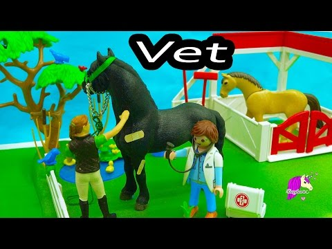 Owner Surprised Mare Gives Birth To Foal A Day with Playmobil Horse Vet Video