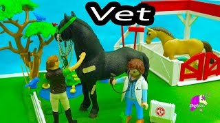 Owner Surprised Mare Gives Birth To Foal - A Day with Playmobil Horse Vet - Video