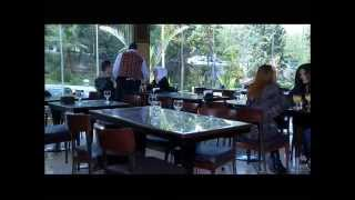 جزء من فلم بدون عنوان - محمود نصر . ربا المأمون
