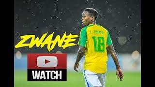 "Themba Zwane ""Mshishi"" 2017 - Skills & Goals || HD Mamelodi Sundowns"