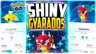 Pokemon Go - EVOLVING A SHINY GYARADOS! (SHINY POKEMON GO TIPS!)