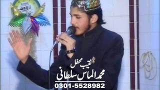 Almas SulTani shan_e_Syeda Zahra (2)