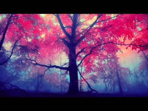 Romance for Violin and Piano 'The Search' in D minor for Violin and Piano