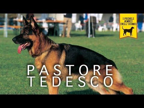 PASTORE TEDESCO Trailer Documentario