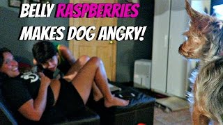 Hilarious Dog Reaction to Belly Raspberries | Vlog with Keepin' It Relle
