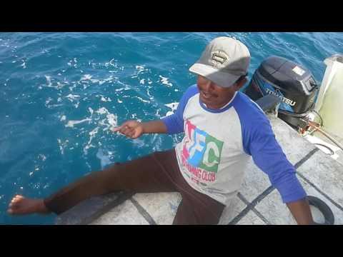 Mancing dasaran di tamban pak mul NEMO FISHING CLUB