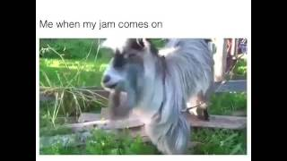 When Your Jam Comes On