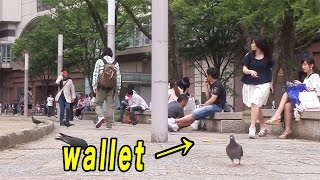Dropping wallet in Japan (Social Experiment)