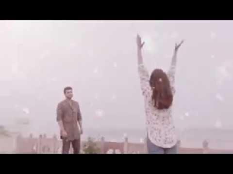 Xxx Mp4 Whatsapp Status Video Half Girlfriend Emotional Dialogue Arjun K Shraddha K 3gp Sex