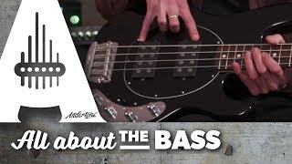 Music Man Stingray Basses - All About The Bass