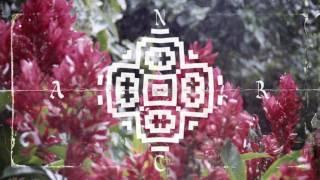 Nicola Cruz - Cumbia del Olvido (RLHBSLCN Remix)