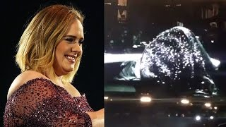 Adele FLASHES Crowd After Beetle Lands In Her Shoe During Concert In New Zealand