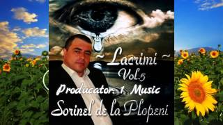 SORINEL DE LA PLOPENI 2015 COLAJ 2015 VOL.5 ALBUM SORINEL DE LA PLOPENI MUZICA DE PETRECERE 2015