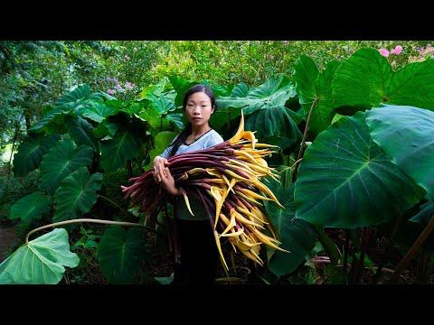 藏在芋荷葉中的美味!做� 了是美味,做不� 會咬喉嚨 芋荷花 Chinese food made with taro petals 野小妹wild girl 美食