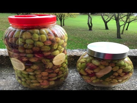 Xxx Mp4 How To Preserve Olives Lebanese Recipe زيتون مخلل على الطريقة اللبنانية 3gp Sex