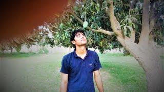 Mango Fruit Garden , Muzaffar garh , Pakistan ( Part 3 )