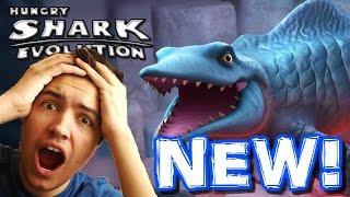BRAND NEW SHARK! MR SNAPPY! - Hungry Shark Evolution Update - New Shark First Gameplay!