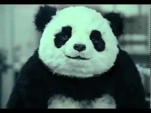 Xxx Mp4 Never Say No To Panda 3gp Sex