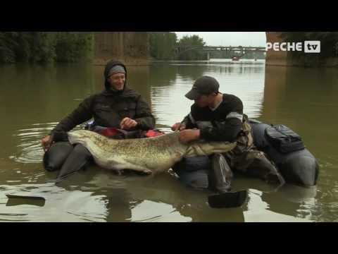 Pêche du Silure en Float tube  Globe Fishing Tarn et Garonne 15