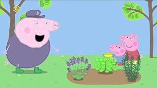 Peppa Pig Season 4 Episodes 27   39 Compilation in English