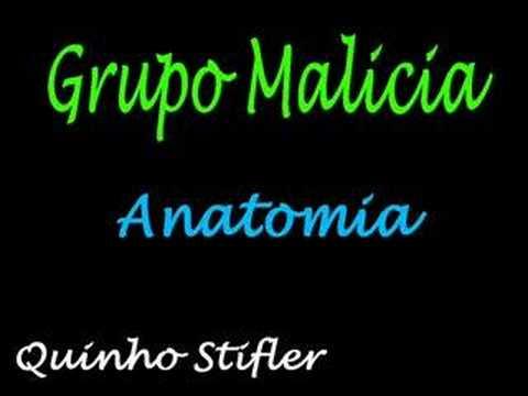 Grupo Malicia Anatomia